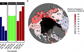 Primary Production in the Arctic Ocean